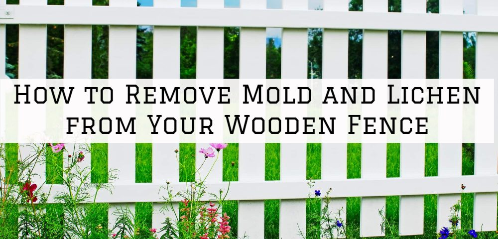 How to Remove Mold and Lichen from Your Wooden Fence in Blue Bell, PA.